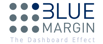 Blue Margin - Professional Services