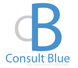 Consult Blue -  Marketing and Sales
